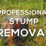 stump removal in Wilmslow