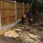 Stump Grinding in Chester