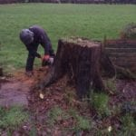 Stump Removal in Didsbury