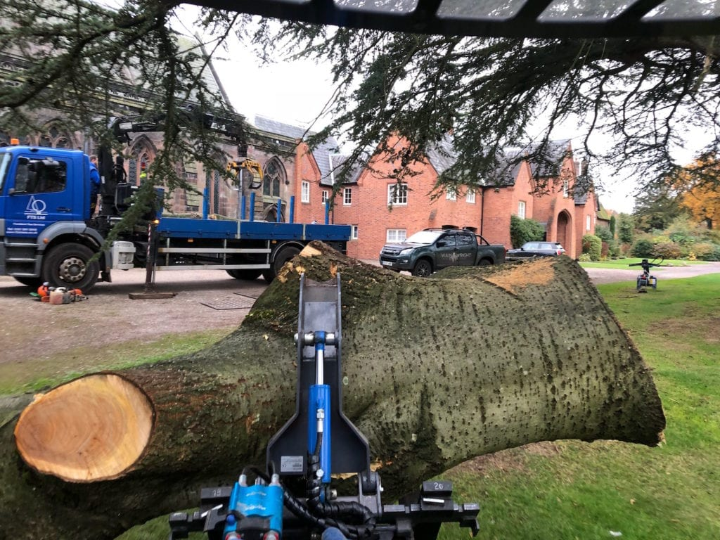 Wainwright Stump Removal | Professional Tree Stump Grinding and Removal Cheshire and the North West | Tree Removal